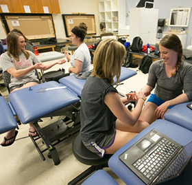 What do Ocupational Therapy masters programs want your major to be?