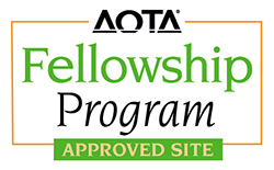 AOTA Approves Occupational Therapy Pediatric Fellowship Program