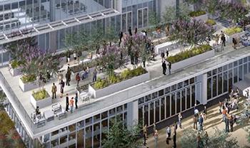 Campus rendering photo
